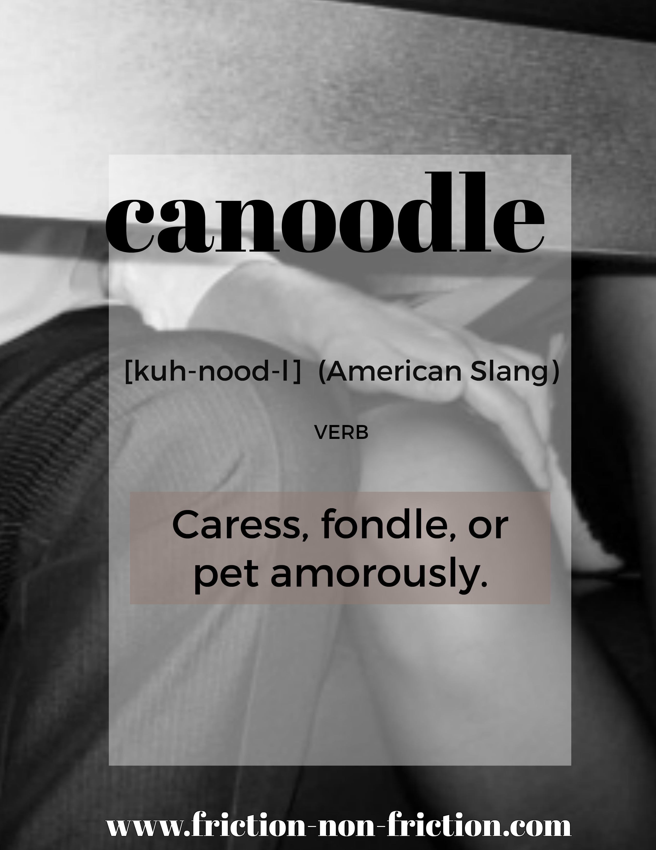 Canoodle -- another great FRICTIONARY definition from Friction non Friction